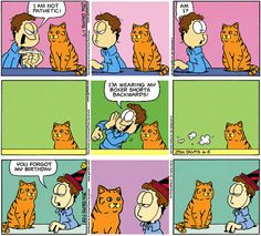 Garfield replaced with a real cat.  HAHAHA!