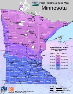 Minnesota Hardiness Zones Map (to help you decide which plants are best suited for your organic garden).