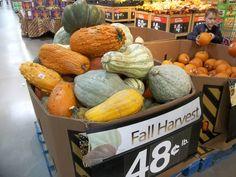あめりか日記: 秋です。パンプキンがゾロゾロ
