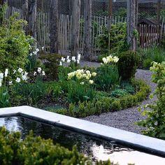 Tulpanerna är så vackra nu, hoppas de håller sig till nästa helg! @trip2garden @lillagrona_viktoria @hakesgard #trädgårdstitten #fikaoträdgård