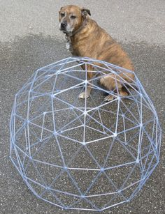 Making a geodesic dome from skewers or straws.