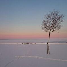 Winterwonderland, Holbæk Denmark