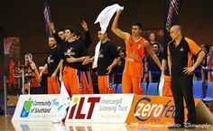 Celebration from the bench while Coach Paul Henare looks on. Stadium Southland, June Southland Sharks v Otago Nuggets. Sharks, Celebration, That Look, Bench, June, Community, Shark, Benches, Bench Seat