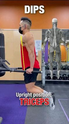 Dip Workout, Full Body Gym Workout, Gym Workout Tips, Fit Board Workouts, Workout Videos, Forearm Workout, Triceps Workout, Muscle Fitness, Fitness Tips