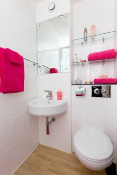 Mountain Halls Premium: inside the private ensuite bathroom. It has storage shelves and mirror and shower. There is also a pull-out washing line in the shower to peg underwear. Storage Shelves, Toilet, Underwear, Mountain, Student, Shower, Bathroom, Mirror, Storage Racks