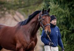 CATCHING UP WITH AMERICAN PHAROAH March 03, 2016