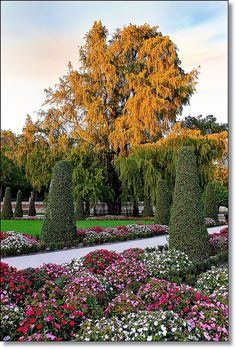 Parque Del Retiro, Madrid, SPAIN. (01/10/2012 by Saúl Tuñon Loureda, via Flickr)