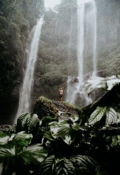 Beautiful World, Beautiful Places, Waterfall Hikes, Bali Travel, Oh The Places You'll Go, Amazing Nature, Dream Vacations, Where To Go, The Great Outdoors