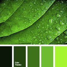 Color Palette #3200