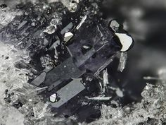 Cordierite with Hematite, Laachersee - volcanic area Eifel, Germany. Fov 4 mm. Copyright : Stephan Wolfsried