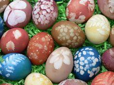 Sørg naturlige farvestoffer til dit påskeæg fra din have foder og edibles: The Pecks   OregonLive.com