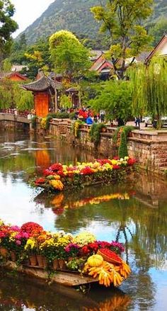 Lijiang, CHINA - Explore the World with Travel Nerd Nici, one Country at a Time. http://travelnerdnici.com