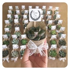Mini sukulent, mini succulent, kaktüs, cactus, wedding favors, nikah şekeri, nikah hediyesi, wedding, babyshower gifts, christmas, valentines day, terrarium, teraryum, babyshower, sevgililer günü, birtday gifts, custom party, consept party, custom made, Handmade gifts, diş buğdayı ~ by Atolyeylul #WeddingIdeasSouvenir