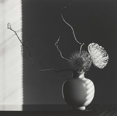 ROBERT MAPPLETHORPE, Flower Arrangement, 1986. Silver gelating print. Stoneware vase by Berndt Friberg for Gustavsberg, Sweden c.1960s. Mapplethorpe was an avid collector of Swedish Mid-Century Modern ceramics and several of these pieces are featured...