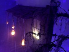 Event design that included multiple props being created including an entire swamp shack facade and swamp tree. Voodoo Halloween, Purple Halloween, Halloween 2020, Halloween House, Voodoo Party, Happy Halloween, Swamp Party, Swamp Theme, Scary Halloween Decorations