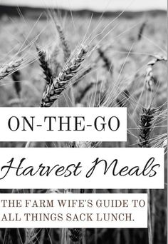 Does your family get tired of the same old things in their sack lunch? Check out my book, On-the-Go Harvest Meals for some on-the-go, make-ahead meals and sides inspired by farm life in the summer.