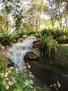 Jardim Botânico, Curitiba, Brazil