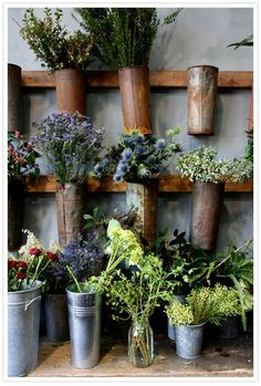 Love rusty containers and flowers