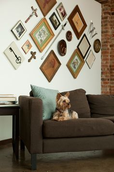 "Sneak Peek: Best of Dogs. ""Moving from a bungalow to a loft, Megan and Paul realized that their artwork was too small for their expansive walls, so they clustered everything together and hung it at an angle to be more visually interesting. Rufus thinks it looks great!"" #sneakpeek"