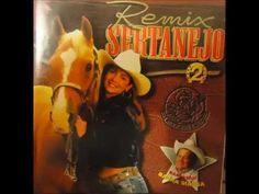 REMIX SERTANEJO 02 - Sucessos Sertanejos