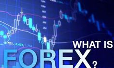 What Is Forex Trading? - Prubiz partners