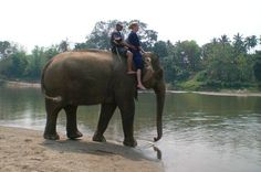 Sexy Woman riding bareback barefoot on an Elephant in the Jungle/Sexy Frau reitet ohne Sattel barfuß auf einem Elefant im Dschungel . ...zum Schwimmen!