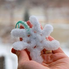 Borax Snowflakes - gotta do this this week!