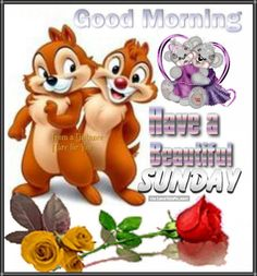 Good Morning Sunday Images and Sunday Morning Wishes nice gm pic Good Morning Sunday Pictures, Sunday Morning Wishes, Cute Good Morning Quotes, Good Morning Happy Sunday, Happy Sunday Quotes, Blessed Sunday, Good Night Wishes, Have A Beautiful Sunday, Daily Quotes