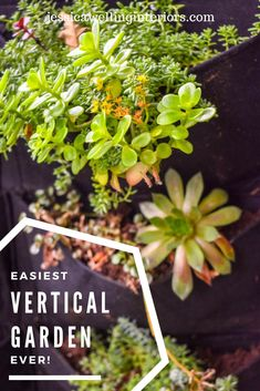 This ultra-simple outdoor vertical garden is the perfect decor for a fence or wall. Just fill the felt planter pockets with your favorite herbs or flowers. Decor Style Home Decor Style Decor Tips Maintenance Outdoor Walls, Outdoor Dining, Outdoor Spaces, Container Gardening, Gardening Tips, Vertical Garden Planters, Vertical Gardens, Welcome To My House, Plantar