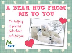 For only $10 each, you can send these sweet E-Valentines from NRDC that help save wildlife while bringing joy to everyone on your list.