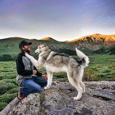 """""""Ich nehme meinen Wolfshund mit auf Abenteuerreisen, weil ich es gar nicht mag, wenn Hunde weggesperrt werden"""" - ☼ ✿ ☺ Informationen und Inspirationen für ein Bewusstes, Veganes und (F)rohes Leben ☺ ✿ ☼"""