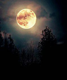 Uma noite linda