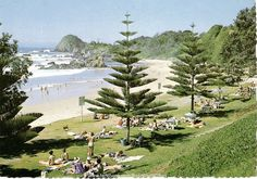 Town Beach Port Macquarie, NSW Australia - before its make over. Places To Travel, Places To See, Places Ive Been, Coast Australia, Australia Travel, Port Macquarie, Australian Plants, Photoshoot Inspiration, Seaside