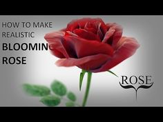 Blender tutorial: How to make realistic blooming rose (part 1) - YouTube