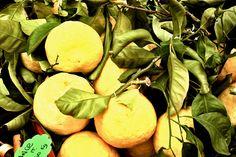 Limone della Costiera Amalfitana