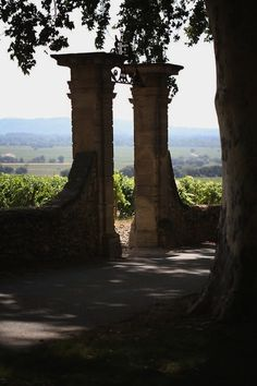 Chateauneuf Du Pape, Wine Vineyards, St Emilion, French Countryside, French Riviera, Far Away, The Good Place, Adventure, Landscape