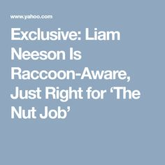 Exclusive: Liam Neeson Is Raccoon-Aware, Just Right for 'The Nut Job'