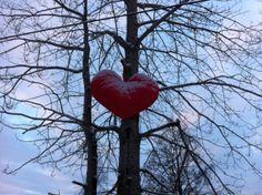 Love, heart, forest, trees. By Malin Sköld