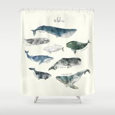 Whales Shower Curtain by Amy Hamilton - $68.00  society6