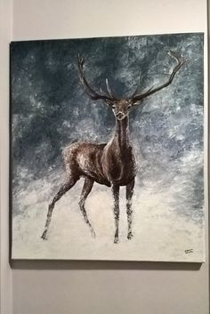 Deer, winter, frost, snow, holidays, Christmas time, cold, night, magic.