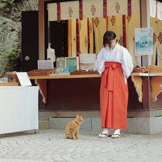 Cat and shrine maiden Japanese Culture, Japanese Girl, Shrine Maiden, Heian Era, Amor Animal, Japan Photo, Nihon, People Of The World, I Love Cats