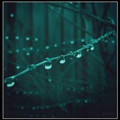 Tränen  Tränen und Regentropfen, beide gleichen sich sehr, zunächst zartes Klopfen, später rauschendes Meer.  Verletzt wird die Seele, es blutet das Herz, die brennende Kehle, verkündet den Schmerz.  Wolken wachsen zur Mauer, färben sich bläulich, im Nu folgt ein Schauer, kalt und abscheulich.  Regentropfen und Tränen, wie soll's anders sein, man braucht's kaum erwähnen, in beiden steht man allein.