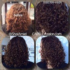 highlights & haircut www.ShaiAmiel.com