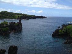 Der Kontrast zwischen den schwarzen Felsen, den knall grünen Pflanzen und dem Meer ist einfach wunderschön.