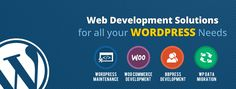 WordPress Website Design Company in Bangalore,WordPress Design Company in Bangalore,WordPress Company in Bangalore,WordPress Website Development Company in Bangalore, Wordpress website developers in Bangalore Wordpress Website Development, Website Development Company, Wordpress Website Design, Website Design Company, Web Design Services, Seo Services, Design Agency, Best Web Design, Website Themes