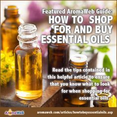 How to Shop For and Buy Essential Oils: Read the tips contained in this helpful article to ensure that you know what to look for when shopping for essential oils.
