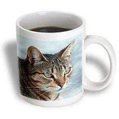 3dRose Tabby Cat Portrait, Ceramic Mug, 11-ounce