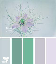 delicate hues