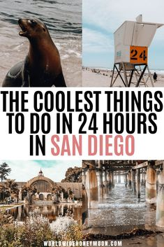 24 Hours in San Diego Us Travel Destinations, California Destinations, La Jolla California, Visit California, California Travel, Usa Travel Guide, Travel Usa, Budget Travel, Travel Guides