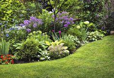 Ogród w cieniu. Jakie rośliny na rabatę w cieniu - genialne pins, names, draft